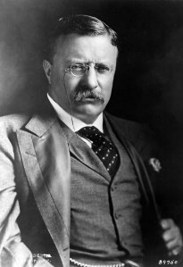 """If you could kick the person in the pants responsible for most of your trouble, you wouldn't sit for a month."" ~ Theodore Roosevelt"